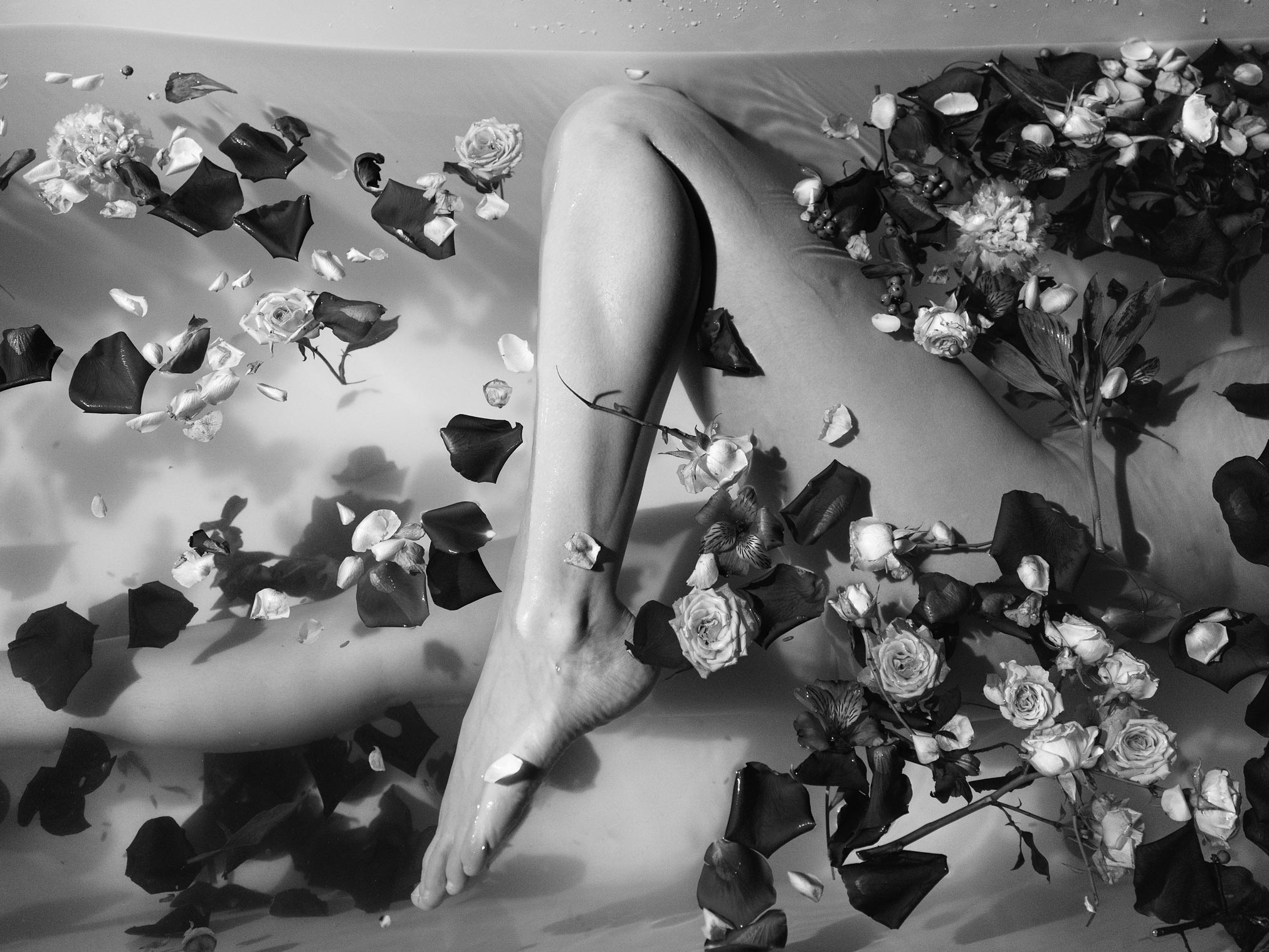 lovegrove-hollywood-60 is a picture of a girls leg in a bath of rose petals